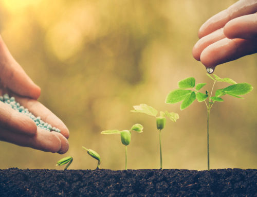 7 Calls to Action to Nurture Prospects (Hint: Not Everything Is About Buying)